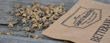 Ferme Sainte Marthe semences- graines Bio